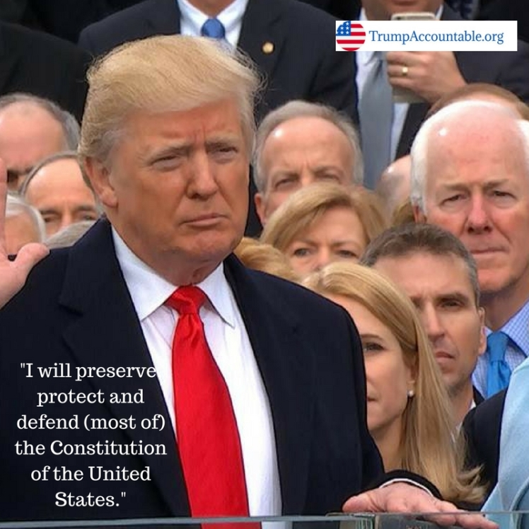 i-will-preserve-protect-and-defend-most-of-the-constitution-of-the-united-states